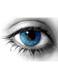 contact lenses for blue eyes